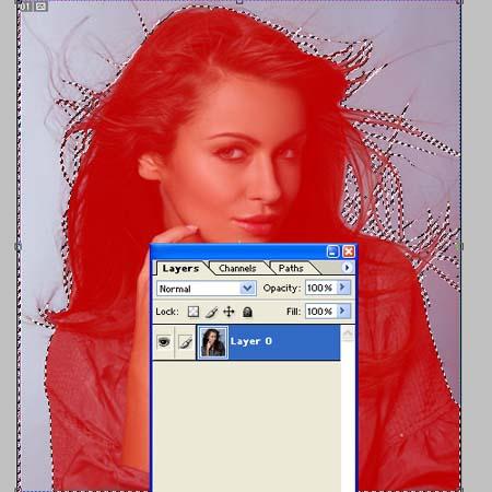 http://www.naikom.ru/img/blog/postpics/hair/12.jpg