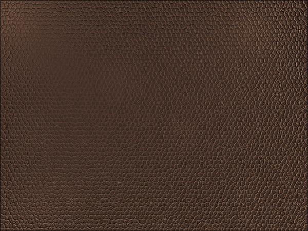 скачать бесплатно текстуры кожа: